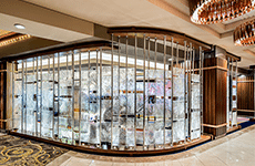Architectural Textured Glass Partitions